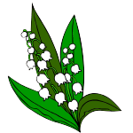 muguet[1] copie